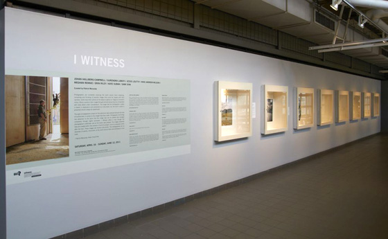 I Witness, installation view